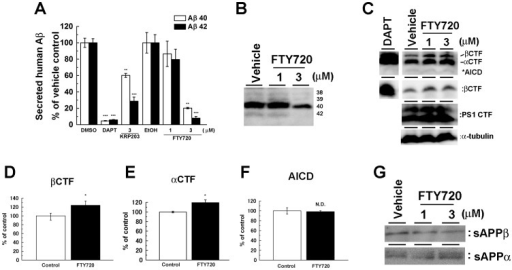 FTY720 decreased the γ-secretase-mediated cleavage of APP.SC100 were transiently transfected in N2a cells. After 24 hrs transfection, cells were treated with FTY720 or KRP203 for 24 hrs. (A) Levels of secreted human Aβ detected by human Aβ-specific ELISA (n = 4, mean ± SEM **P<0.01, ***P<0.001). (B) Immunoblotting analysis of secreted human Aβ separated by modified Tris/Tricin/8M Urea gel system. (C) Immunoblot analysis of APP CTFs including overexpressed SC100 and endogenous PS1 in FTY720-treated cell lysates. Quantification analysis of (C) for βCTF (D), αCTF (E) and AICD (F) (n = 4, mean ± SEM *P<0.05). (G) Immunoblot analysis of endogenous sAPPα and sAPPβ in the conditioned media of N2a cells.