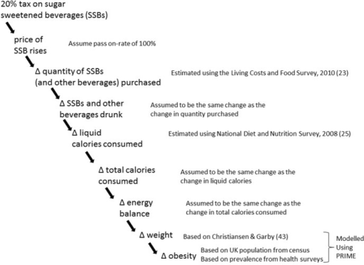 Fig 1 Modelled causal pathway between sugar sweetened drink taxation and obesity