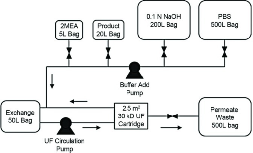 Figure 1  Process Flow Diagram For The Disposable Exch