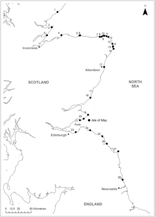 Winter survey sites for colour-ringed shags.Black points denote positive survey sites, where at least one adult colour-ringed shag known to have bred on the Isle of May was resighted in at least one winter 2009–2012. Sites are defined as roosts separated by ≥1 km.