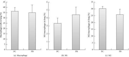 Effect of Antrodia camphorata beta-glucan on the percentages of macrophages and proportions of M1 and M2 macrophages. Normal mice were fed with distilled water or Antrodia camphorata beta-glucan daily and euthanized after 12 days. Lungs were then harvested (n = 5). Flow cytometer was used to analyze the percentages of M1 and M2 macrophages in the lungs. (a) Percentages of macrophages. (b) Percentages of M1 macrophages. (c) Percentages of M2 macrophages. *Group PC: fed with twice-distilled water; group PB: fed with Antrodia camphorata beta-glucan.