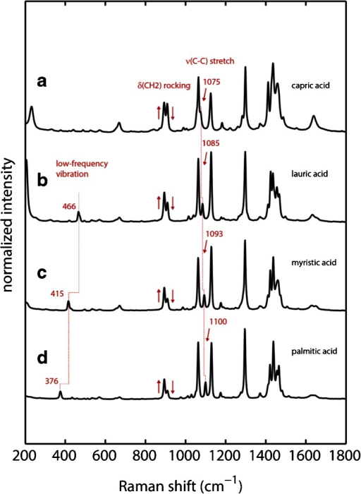 Experimental Raman spectra of dry fatty acids (a) capric acid (b) lauric acid (c) myristic acid and (d) palmitic acid. Experimental conditions: 4 mW laser power, T = 298 K, 60 s accumulation time.