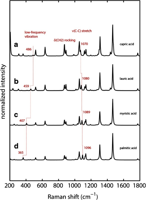 Calculated Raman spectra of fatty acids using DFT. Spectra have been scaled using a wavenumber linear scaling procedure according to Yoshida et al. (19) (a) capric acid (b) lauric acid (c) myristic acid and (d) palmitic acid.
