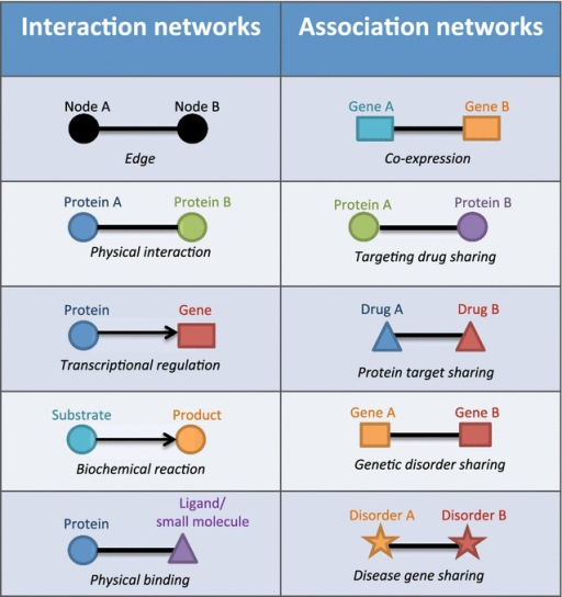 Interaction networks (Left) represent direct interactions between biological molecules (e.g. transcripts, proteins, and ligands). The interactions represented include direct physical interaction (e.g. protein–protein, and gene regulatory networks) or transition (e.g. metabolic network). Association networks (Right) represent biological molecules that are linked based on their shared and/or common properties (e.g. co-expression)