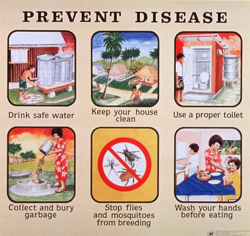 <p>Tan poster with black lettering.  Title at top of poster.  Visual image is a seriers of six illustrations on personal and environmental hygiene.  The brightly colored panels show a man drawing water from a cistern, three tidy houses, a man entering an outhouse, a woman throwing garbage in a pit, three bugs under a red &quot;do not&quot; symbol, and a child washing his hands as the family sits down for a meal.  Publisher and sponsor information in lower right corner.</p>