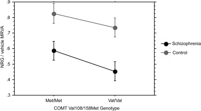 COMT Val108/158Met predicts variation in cell adhesion.COMT, a putative susceptibility gene for both schizophrenia and metastatic cancer, previously was shown to have genotype effects on cell migration with the risk genotype rs4680 V/V showing the most impaired migration. In our adhesion data (n = 40), there was a strong trend (p = 0.0632) towards decreased NRG1α-induced MRVA of risk homozygotes compared with non-risk homozygotes (no heterozygote cell lines are maintained).