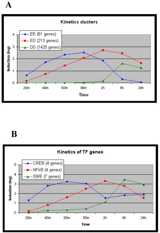 Kinetics of the LPS-induced transcriptional response. (A) Genes that were induced by LPS (by at least 1.8-fold) were divided into three kinetic sets according to the time their expression was first induced and the time it peaked. The 'EE' set contains the early induction, early peak genes; the 'ED' set contains early induction, delayed peak genes; and the 'DD' set contains delayed induction, delayed peak genes. The figure displays the mean expression patterns of the genes assigned to the three kinetic sets in the MmBMM dataset (y-axis is log2 of induction fold). (B) Mean expression of induced genes that encode for TFs: ATF/CREB (Atf3, Fos, Jun, Junb), NF-κB (Nfkb1, Nfkb2, Rel, Relb), and ISRE (Irf1, Irf2, Irf7, Stat1, Stat2, Stat3, Stat5a). The expression pattern of each TF is highly correlated with that of the kinetic wave, in which the computational promoter analysis found an over-representation of its BSs (compare the kinetic expression of the TF genes (B) and the induced waves (A)).