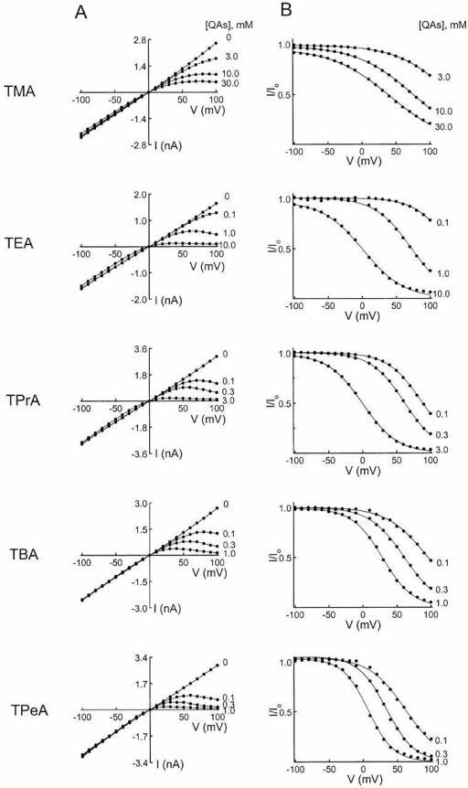 Effects of QAs on the I-V relationship of ROMK1 channels. (A) Steady-state I-V curves without and with various concentrations of one of five QAs, obtained from the data as shown in Fig. 5. (B) Ratios of the I-V curves with and without the QAs shown in A. The curves superimposed on the data are fits of the equation I/Io = Kd / (Kd + [QA]), where Kd = Kd(0 mV)e−ZFVm/RT. The Kd(0 mV) and Z values obtained from the fits are summarized in Fig. 9.