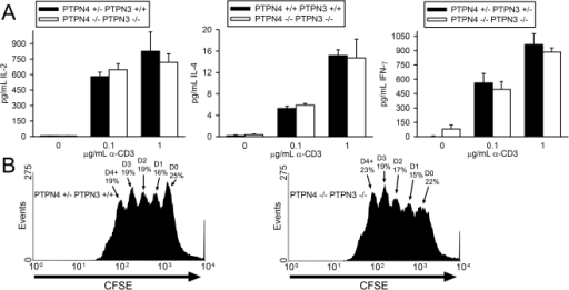 T cell cytokine synthesis and proliferation in PTPN4/PTPN3 double-deficient mice.A) LN T cells were stimulated with the indicated concentrations of CD3 antibody and 0.75 µg/mL CD28 antibody. Concentrations of cytokines in supernatants were determined as in Figure 2. Each bar represents the mean plus one standard deviation of triplicate determinations from one mouse. Differences between mice are not statistically significant (Student's T-test). Data are representative of six repeat experiments. B) Splenic T cells were labeled with CFSE and stimulated with 0.1 µg/mL CD3 antibody and 0.75 µg/mL CD28 antibody. After 72 h, CFSE dye intensity was measured by flow cytometry. The percentage of live cells that have undergone the indicated number of cell divisions is shown. Data are representative of three repeat experiments.