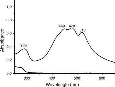 Dashed line UV/vis spectrum of the core-shell β-carotene/gelatin sample with 0.05 g/l concentration; solid line UV/vis spectrum of gelatin at 1 g/l