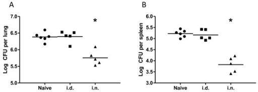Control of mycobacterial growth after aerosol M. tuberculosis challenge of Ad85A immunized mice. BALB/c mice were immunized with Ad85A i.d. or i.n. and challenged 4 weeks later with M. tuberculosis by aerosol. Mice were sacrificed 6 weeks later and mycobacterial burden in the lungs (A) and spleen (B) determined. The results show the log CFU in each mouse and the mean for each group and are representative of at least 2 independent experiments. The data were analyzed using the Kruskal-Wallis test (p = 0.007 comparing all groups), followed by Dunn's multiple comparison test, which returned p-values of < 0.05 for comparisons between naïve vs. i.n. and i.d. vs. i.n. groups. * indicates p < 0.05 compared to naïve or i.d.