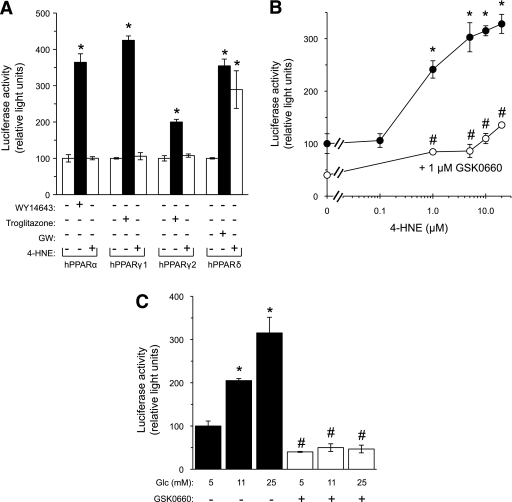 High glucose and 4-HNE activate PPAR-δ in INS-1E cells. A: INS-1E cells were transfected with the hPPAR-α, hPPAR-γ1, hPPAR-γ2, or hPPAR-δ expression vectors; the hRXR expression vector; and the 3XPPRE-TK-luciferase reporter plasmid. Renilla luciferase plasmid was transfected for normalizing the luciferase activity data. The transfected cells were treated with 60 μmol/L WY14643, 30 μmol/L troglitazone, 0.1 μmol/L GW501516 (GW), or 1.0 μmol/L 4-HNE for 24 h and luciferase activity was then measured. The 100% values were assigned to the respective untreated control groups. *P < 0.05 for differences from the respective controls. B: INS-1E cells were transfected as described in A using the hPPAR-δ expression vector. The cells were then incubated for 24 h with increasing concentrations of 4-HNE without (●) or with (○) 1 μmol/L GSK0660. Luciferase activity was then measured. The value of light units measured in lysates of vehicle-treated cells was taken as 100%. *P < 0.05 for differences from untreated controls. #P < 0.05 for differences from the respective 4-HNE–treated cells. C: INS-1E cells were transfected as described in B and incubated for 48 h in RPMI-1640 medium containing the indicated glucose levels. GSK0660 (1 μmol/L) was present during the last 24 h of incubation. *P < 0.05 for the difference in luciferase activity in comparison with the control incubation at 5 mmol/L glucose in the absence of GSK0660. #P < 0.05 for difference from the cells incubated in the same glucose concentration without GSK0660. The 100% value was taken as the light units of control cells at 5 mmol/L glucose. Results are mean ± SEM, n = 3. The vehicle DMSO, used at a 1:1,000 dilution in the incubation medium, had no significant effect on GSIS. Glc, glucose.