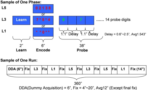 The SIRP timing and design.Top: Timing and contents of each Prompt-Encode-Probe block for each WM load level. Bottom: A sample run combining six blocks at different WM load levels in pseudo-random order.