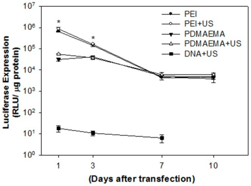 In vitro transgenic expression of PEI/DNA nanoparticles at an N/P ratio of 5 and PDMAEMA/DNA nanoparticles at a weight ratio of 10 with or without US exposure.The PEI mediated gene expression on day 1 was significantly higher than that of PDMAEMA regardless of US exposure. However, there was no difference after 7 days. *P<0.05 vs. PDMAEAM.