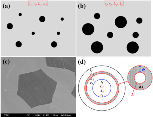 Results of growth model and SEM image. Results of growth model with growth time of (a) t1 and (b) t2. (c) SEM image of hexagonal graphene domain with hydrogen flow rate of 30 sccm.(d) The deviation of growth model for graphene domain.