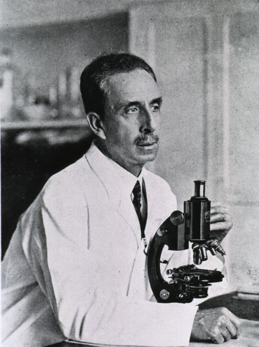 <p>Half-length, face to the right, seated in front of microscope, wearing lab coat.</p>