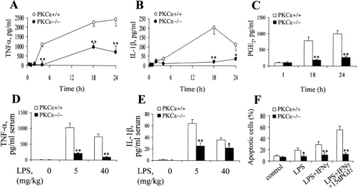 The release of proinflammatory cytokines and prostaglandin E2 are impaired in PKCε−/− mice. (A–C) Thioglycollate-elicited peritoneal macrophages were activated for the indicated times with 200 ng/ml of LPS and 20 U/ml of IFNγ. The amount of TNF-α, IL-1β, and PGE2 in the culture medium was then determined. (D–E) Bar graphs demonstrating the serum levels of TNF-α (1 h after injection) and IL-1β (4 h after injection) after the intraperitoneal injection of either 5 mg/kg or 40 mg/kg of LPS. (F) Apoptosis of thioglycollate-elicited peritoneal macrophages 24 h after activation by LPS (200 ng/ml), LPS plus IFNγ (200 ng/ml and 20 U/ml, respectively), or LPS, IFNγ, and 15dPGJ2 (2 μM). Results show the mean ± SEM of three experiments. The * and ** denote P < 0.05 and P < 0.01, respectively, for experimental vs. wild-type animals, for the parameters indicated.