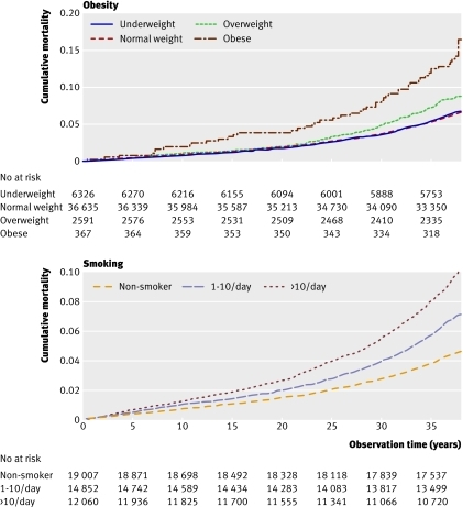 Fig 1 Cumulative mortality according to obesity status (underweight (BMI <18.5), normal weight (18.5-24.9), overweight (25-29.9), obesity (≥30)) and smoking status over 38 years of observation