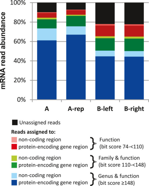 Distribution of mRNA reads assignment. The mRNA reads were assigned to the reference genome database and classified based on their alignment to protein-encoding genes (dark bars) or non-coding (light bars) regions. Based on alignment bit score of mRNA reads to the genome, the reads can obtain phylogenetic and functional identification at genus (blue) and family (green) levels with a minimum bit score of 148 and between 110 and 148, respectively; while the reads with an alignment bit score between 74 and 110 only obtained functional assignments (red). The unassigned reads were represented in black. The specific read numbers that belong to each classification are presented in table S4.