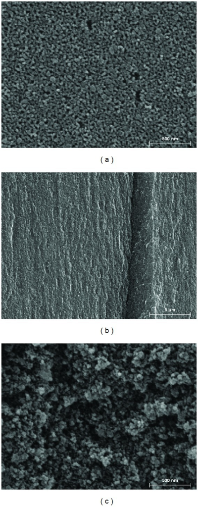 The scanning electron microscopy photos of the as-prepared porous silicon material: (a) in-plan view of the treated silicon wafer (×50.000), (b) transversal view of the porous material (×5.000), (c) particle surface after grinding (×50.000).