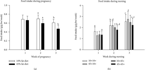 The feed intake of the dams during (a) pregnancy, that is, from mating to the end of week 3 of pregnancy (n = 37–119), and (b) the three week lactation period (n = 12–69), recorded as gram diet per gram body weight per week (mean ± SD). During pregnancy, the dams were given either a 10% fat (white columns) or a 45% fat diet (black columns). The data for the lactation period were stratified according to the four different combinations of the 10% fat or 45% fat diet during pregnancy and the 10% fat or 45% fat diets during the lactation period; 10+10+ (white columns), 45+10+ (light grey columns), 10+45+ (dark grey columns), 45+45+ (black columns), as explained in the legend to Figure 1. (a) a, bSignificantly higher with a 10% fat diet versus a 45% fat diet within the same week. (b) a, b, cSignificantly higher with a 10% fat diet during both pregnancy and nursing periods versus a 45% fat diet in the same periods within the same week. (b) d, eSignificantly higher with a 45% fat diet during pregnancy and a 10% fat diet during nursing versus a 45% fat diet in both periods within the same week.