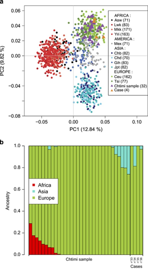 Determination of the geographic origin of the Chtimi sample and variant carriers based on 54 of the ancestry informative SNPs available in the HapMap3 panel. (a) The top two Principal Components (PC1 and PC2) of the PCA represent 12.84 and 9.82% of the genetic variance. Each plot represents one individual: case, control from the Chtimi sample, or from the HapMap3 panel. (b) Ancestry estimation for the Chtimi sample and variant carriers using ADMIXTURE with three possible ancestry clusters: Africa, Asia, and Europe. Each column represents one individual.