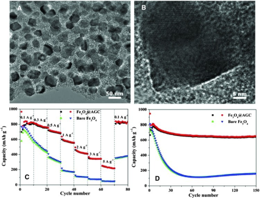 (A and B) TEM (A) and HRTEM (B) images of Fe3O4@AGC electrode material. (C and D) Comparison of rate capabilities (C) and cycle performance (D) of Fe3O4@AGC and bare Fe3O4.
