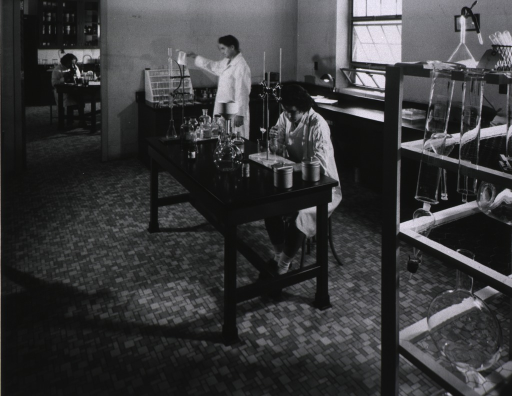 <p>Laboratory (one of five) with workers.</p>