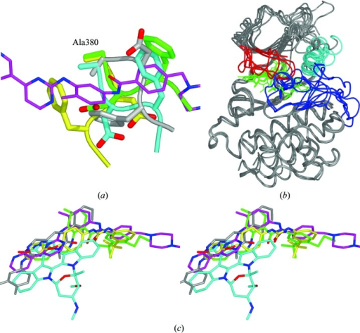 (a) Superposition of the four main DFG conformations observed in Abl kinase structures, with the active conformation in cyan, the DFG-out conformation in yellow, the DFG-flip conformation in grey and the Src-like inactive conformation in green. (b) Superposition of all structures reported here plus PDB entry 2g1t. The P-loop is shown in red, the C-helix is cyan, the A-loop is blue and all the ligands are shown in green. The superposition is based on an alignment of the C-terminal lobes to emphasize the relative differences in angles between the N- and C-terminal lobes of the kinase. (c) A stereoview of all the ligands superimposed (imatinib, magenta C atoms; NVP-AFN941, cyan C atoms; NVP-AFG210, yellow C atoms; NVP-AEG082, green C atoms; PD180970, grey C atoms).