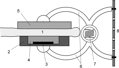 Schematic Diagram Of The Leaf Patch Clamp Pressure Prob Open I