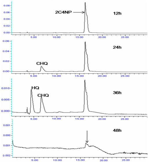 HPLC analysis showing complete depletion of 2C4NP with appearance of metabolites.