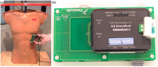 (a) Torso phantom and Qi-A13-Board (pinging mode) on the lateral wall; (b) AVID-Receiver close to the edge of the Qi-A13-Board. If the AVID-Receiver was moved further over the edge the connection was interrupted.