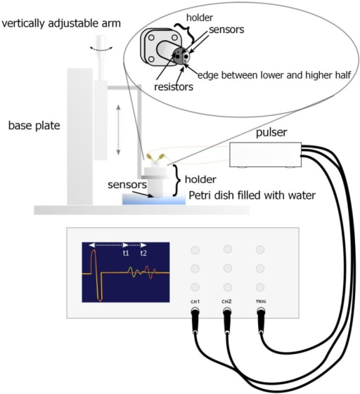 Experimental setup for UTDR. Ultrasonic transducer is attached to an adjustable holder which distance can be changed with a micrometer screw. Ultrasonic pulse is generated with a pulser and monitored with an oscilloscope.