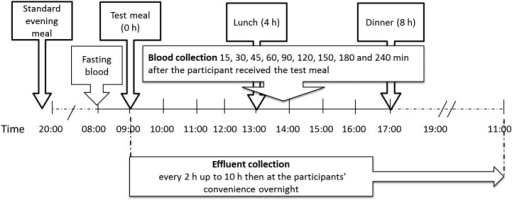 Blood and effluent collection time points and meal times. Fasting blood samples for baseline measurements were collected at −15 min (glucose only) and, for all analytes, immediately before the test meal (0 min). Blood samples thereafter were collected at regular intervals up to 4 h, and ileal effluent was collected every 2 h up to 10 h. Overnight effluent samples (between 2200 and 1100 the next day) were collected at variable time points, at the participants' convenience. Effluent samples were preserved in ethanol or by freezing at the time of collection to inhibit enzymatic and chemical deterioration of carbohydrates (e.g., starch).