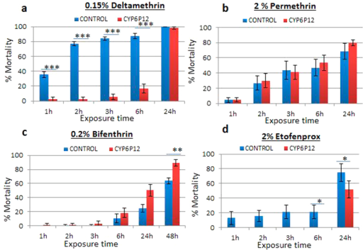 Knockdown and mortality rate after bioassay tests with transgenic strains for CYP6P12 at different time-points.(a) is the result for test with deltamethrin on the transgenic Act5C-CYP6P12 strain and the control strain (the progeny from the cross between the UAS-CYP6P12 females and w1118 males (which do not over-express the P450 transgene). (b) is the result for permethrin on transgenic Act5C-CYP6P12; (c) is the result for bifenthrin on transgenic Act5C-CYP6P12 and (d) is for etofenprox on transgenic Act5C-CYP6P12.