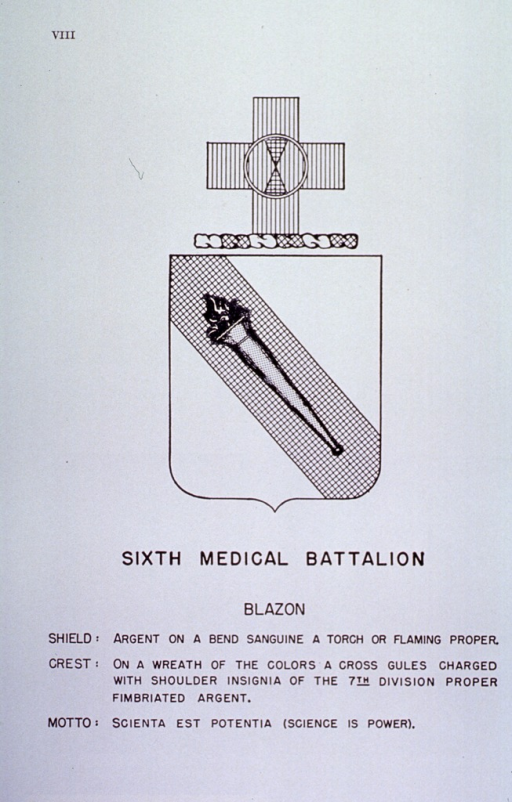 <p>Insignia of Sixth Medical Battalion.</p>