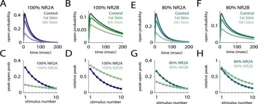 Estimating open probability using MK-801 block.Simulation of an experiment that used brief pulses of glutamate and MK-801 to estimate the open probability of receptors given different NR2A/NR2B ratios [19]. The average behavior of NR2A and NR2B-containing receptors under this protocol was simulated using a probabilistic model. (A,B) The responses of NR2A and NR2B-containing receptors alone, showing the responses to glutamate alone (Control) and to the 1st and 5th stimulations. (C,D) The peak open probability upon successive stimulations, unnormalized (C) and normalized relative to the response to glutamate alone (D), showing that NR2A-containing receptors had a higher open probability, and were blocked more rapidly. (E–H) Same as above, but for two mixed populations of receptors. A population containing 80 percent NR2A-containing receptors had a higher open probability and was blocked more rapidly than a population containing 80 percent NR2B-containing receptors. However, when plotted relative to control (H), the block appeared very similar in the two cases. Similar results were observed for other mixed populations.