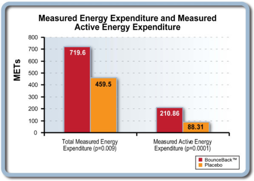 Energy expenditure 48 hours before exercise protocol.