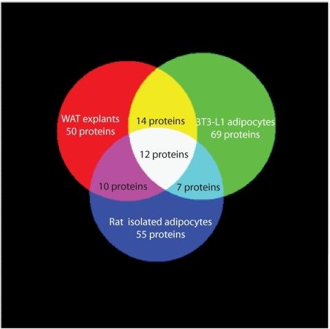 Venn Diagram Showing Overlap Of Protein Secretion From Open I