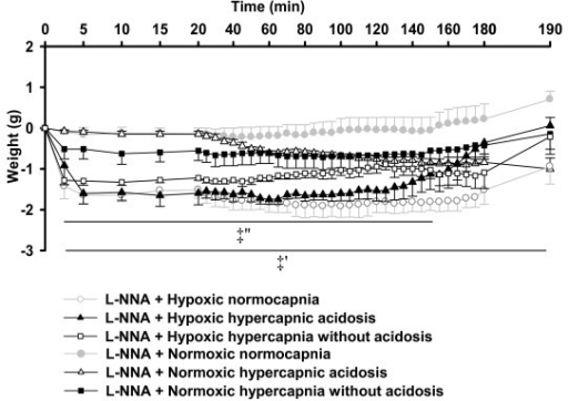 Effects of L-NNA on lung weight during normocapnia and hypercapnia. Lung weight changes of the respective experiments of figure 5. Data are mean ± SEM. ‡', significant difference (P < 0.05) between hypoxic normocapnia and normoxic normocapnia. ‡'', significant difference (P < 0.05) between hypoxic hypercapnia with or without acidosis and normoxic normocapnia.