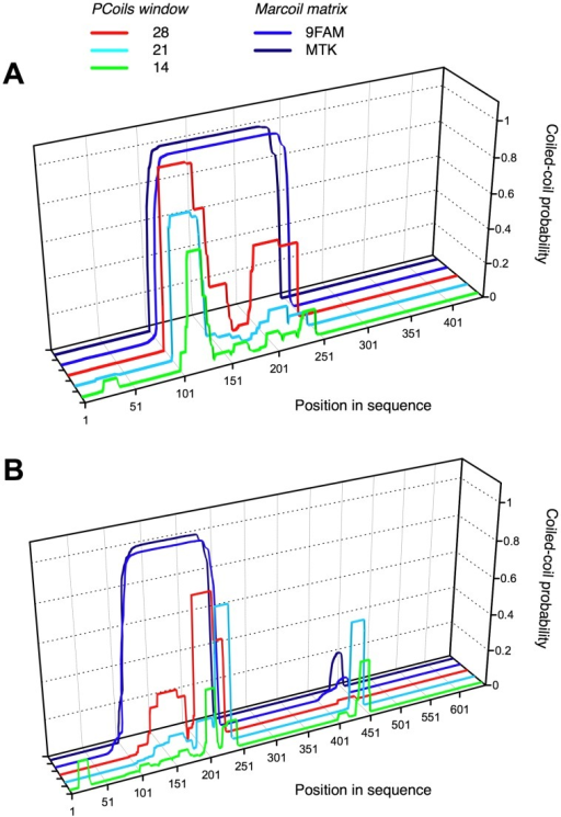 Coiled-coiled predictions for the amino acid sequences of (A) EPclA (ECs2717) and (B) EPclB (ECs1228), using the PCoils[70] and Marcoil[71] algorithms.The graphs indicate regions of high probability for α-helical coiled-coil formation. Three different sequence window sizes were used with the PCoils algorithm: 14, 21 and 28 residues. Two different matrices were used in Marcoil: 9FAM, and MTK-based.