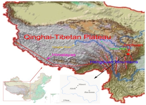 The distribution of Jinchuan yaks in Qinghai-Tibetan Plateau.