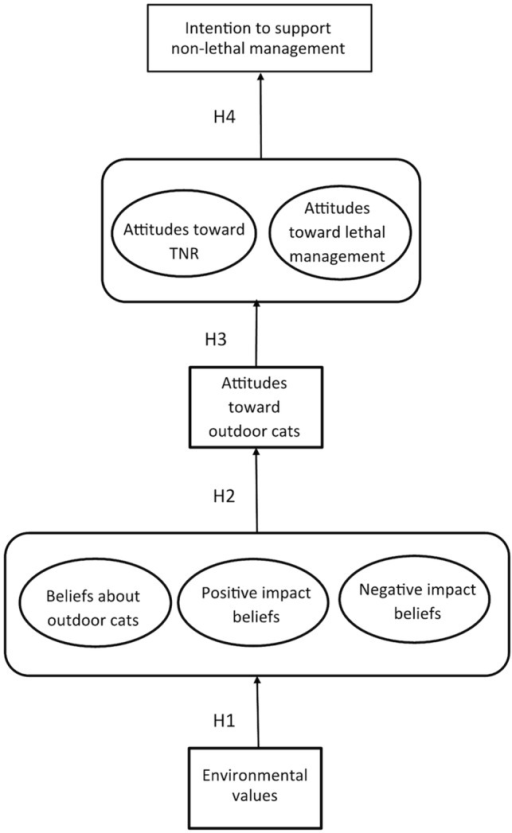 attitudes beliefs and intentions Attitudes and purchase intentions with regard to genetically modified foods – results of a cross-national survey working paper no 69 april 2000 determinants of consumer attitudes and purchase intentions with regard to genetically modified foods – r  elicitation of general attitudes, beliefs, outcome groups and normative referents 6.