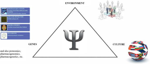 Triangle showing interactions among human genome, environment and culture inthe pathogenesis of psychiatric diseases.