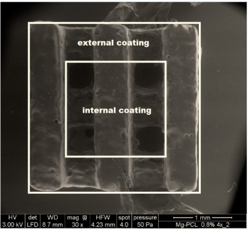 ESEM image of a magnesium PCL implant. Two different zones of the PCL coating were analyzed, named the external coating and the internal coating.