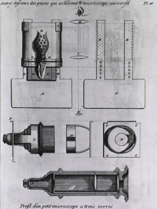 <p>Detail and cross sectional views of various parts of a microscope.</p>