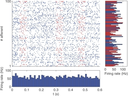 Spatio-temporal spike pattern.Here we show in red a repeating 50 ms long pattern that concerns 50 afferents among 100. The bottom panel plots the population-averaged firing rates over 10 ms time bins (we chose 10 ms because it is the membrane time constant of the neuron used later in the simulations), and demonstrates that nothing characterizes the periods when the pattern is present. The right panel plots the individual firing rates averaged over the whole period. Neurons involved in the pattern are shown in red. Again, nothing characterizes them in terms of firing rates. Detecting the pattern thus requires taking the spike times into account.