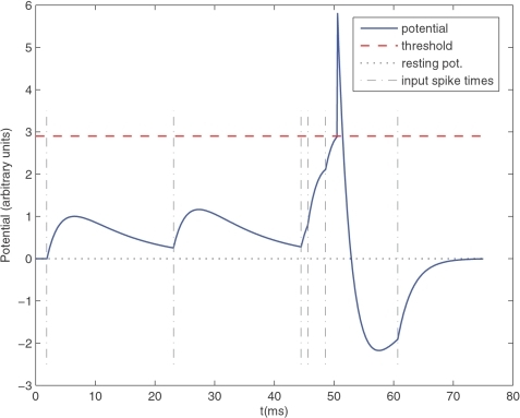 Leaky Integrate-and-Fire (LIF) neuron.Here is an illustrative example with only 6 input spikes. The graph plots the membrane potential as a function of time, and clearly demonstrates the effects of the 6 corresponding Excitatory PostSynaptic Potentials (EPSP). Because of the leak, for the threshold to be reached the input spikes need to be nearly synchronous. The LIF neuron is thus acting as a coincidence detector. When the threshold is reached, a postsynaptic spike is fired. This is followed by a refractory period of 1 ms and a negative spike-afterpotential.