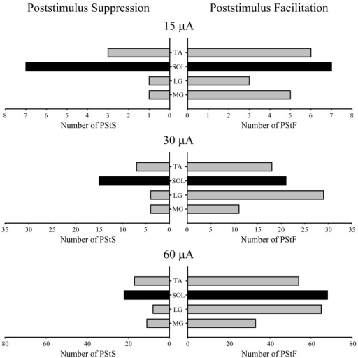 Distribution of PStF (right) and PStS (left) effects obtained from four ankle muscles of the hindlimb at 15, 30, and 60 μA stimuli. Gray bars: fast muscles. Black bars: slow muscle. Muscle abbreviations are the same as in Figure 1.