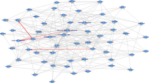 Resulted network of probabilistic pathway inference without knowledge constraints for the targeted citrate cycle metabolic pathway network. Red edges denote correct relationships.